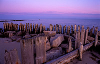 Old Pilings, East Falmouth