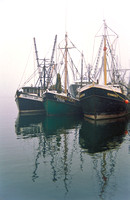 Fishing Boats, Woods Hole