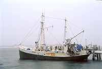 R/V Loligo, Woods Hole