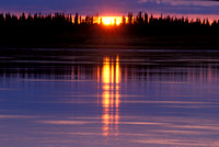 alaska, light, river, sunset, water, yukon, tree, spruce, nature, landscape, art, photo, photography, photograph