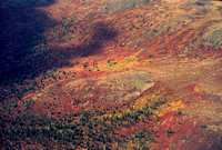 aerial, alaska, autumn, color, fall, light, shadow, tree, tundra, travel, art, photo, photography, photograph