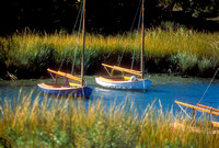 Sailboats in the Marsh